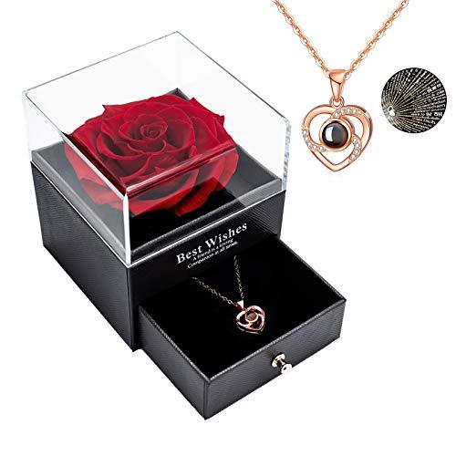 Rosa real preservada Eterna hecha a mano Rosa preservada con amor, collar de...
